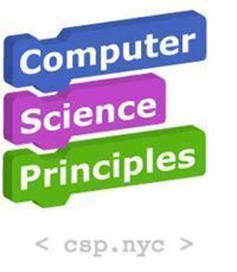 Picture of 2020 AP Computer Science Principles (JFK)